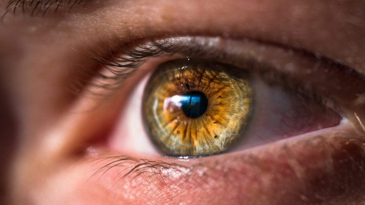 AI could soon tell you how often to see the eye doctor